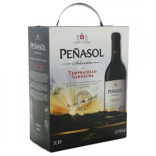 Rượu vang đỏ Tây Ban Nha PENASOL Seleccion Tempranillo Garnacha 3 lít